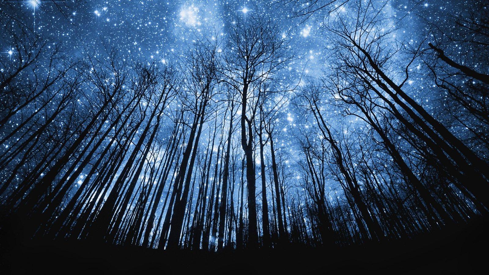 Noche estrellada en la Sierra de la Culebra
