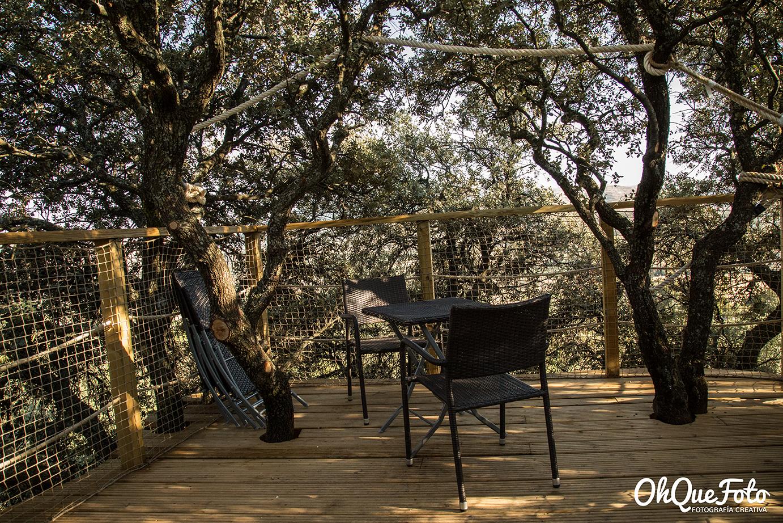 Terraza de la casa del árbol