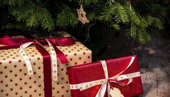 campista regalo