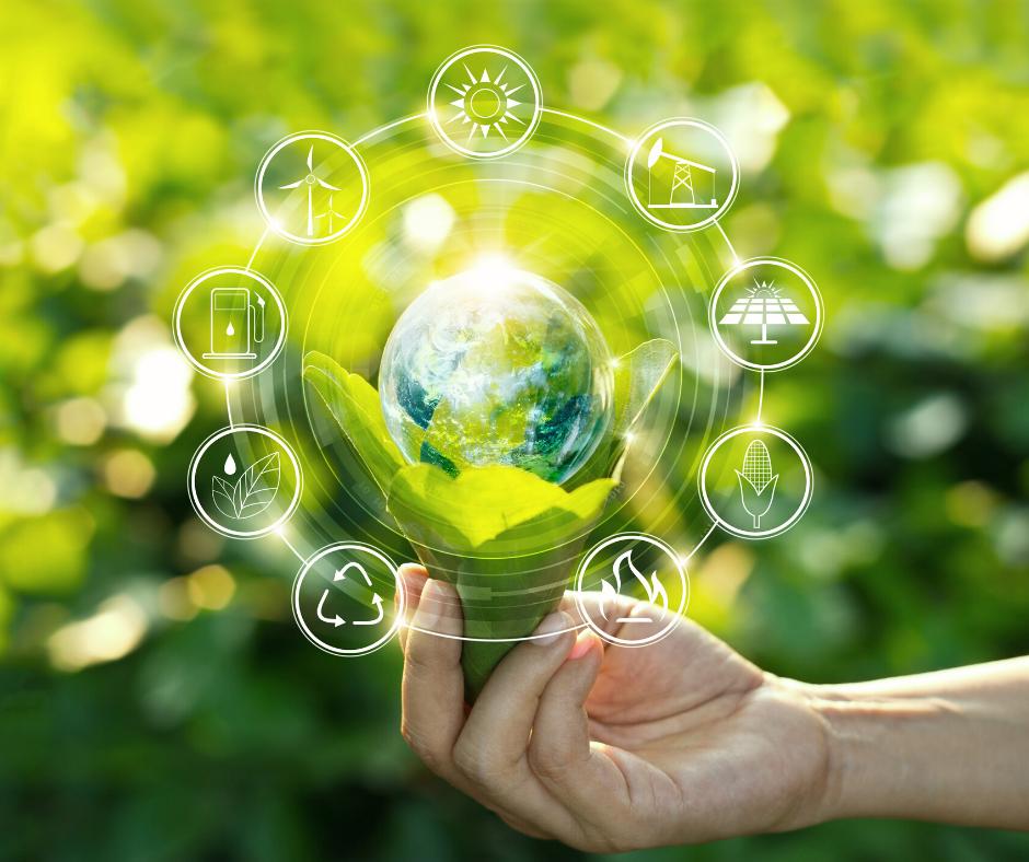 campistas sostenibles